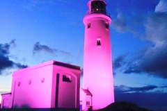 Everyone needs a pink LightHouse!