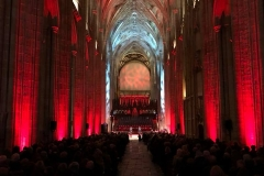 Architectural Cathedral Lighting